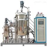 JD-SAFM-05L小型全自动发酵罐