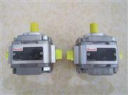 PGF1-21/4.1RA01VP1力士樂齒輪泵REXROTH