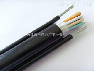 HYA充油电缆_充油通信电缆--HYA
