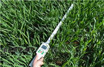 JC- PAR植物冠层测定仪