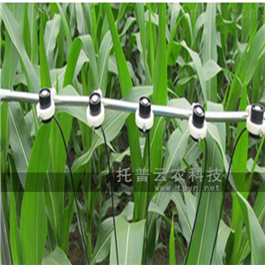 TPF-8N多通道光合有效辐射记录仪