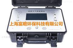 烟气中氟化物分析仪