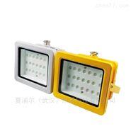 加工間50W防爆泛光燈LED防爆燈