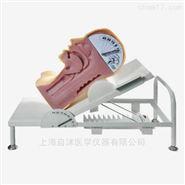高級吞咽機制模型,吞咽與呼吸機制演示模型
