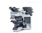 奥林巴斯BX53生物显微镜
