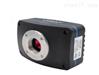 显微镜USB2.0CCD相机VTSH140/300/