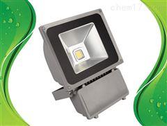 通明电器 ZY8101-L25 防眩泛光灯含U型支架