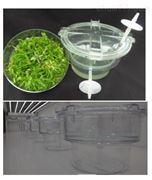 RITA自动化间歇浸没系统组培瓶植物生理