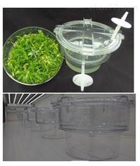 RITA,MATIS间歇浸没式生物反应器 植物