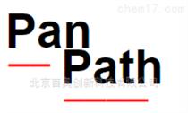 Panpath代理