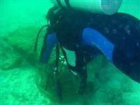 水下导流洞堵漏/报价与施工