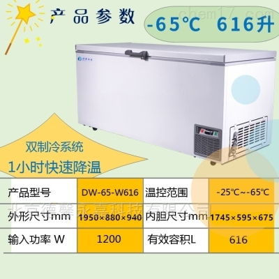 永佳零下65度双系统实验经济款低温冰箱