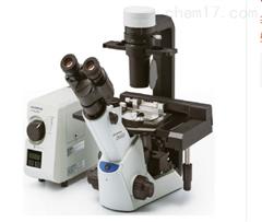 奥林巴斯ckx53显微镜奥林巴斯Olympus ckx53荧光显微镜