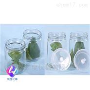 植物组织培养瓶