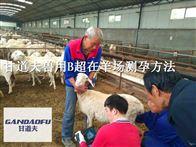 gdf进口羊用B超彩超机今日报价