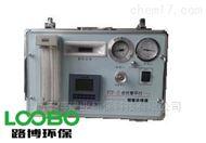 PTP-III皮托管平行烟尘采样仪(便捷式)