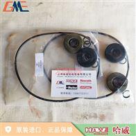 DS 7280-30哈威DS 7280-30维修包 HAWE LP系列泵维修件