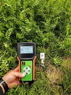 空气温湿度记录仪SBQZ-WS