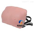 TAH-F14高級乳房檢查模型(穿戴式)|婦嬰