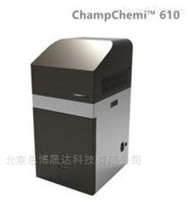 610化学发光/荧光/凝胶成像仪