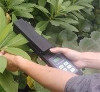 叶面积测量仪SYS-LAM-A