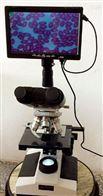 植物病虫害检测仪SYR-BCH