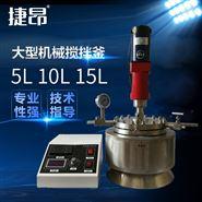 大型機械攪拌高溫高壓反應釜5L