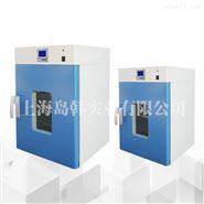 立式小型300度烘干箱電熱恒溫鼓風干燥箱