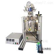 WZ微型机械搅拌高压反应釜