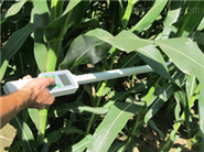 植物冠层分析仪SYN-PAR