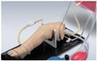 嬰兒股靜脈、動脈、骨內注射腿