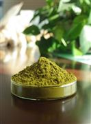 紫锥菊提取物多酚菊苣酸为什么会大受欢迎