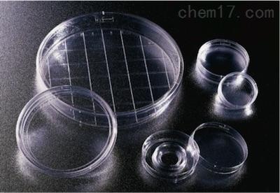 美国BD Falcon细胞培养皿