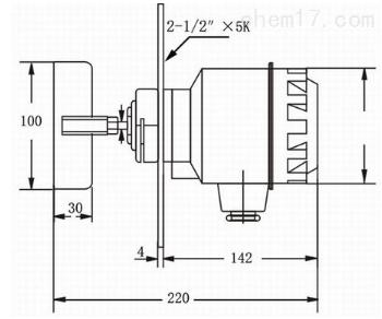 RC-10B 标准螺纹型阻旋式料位开关