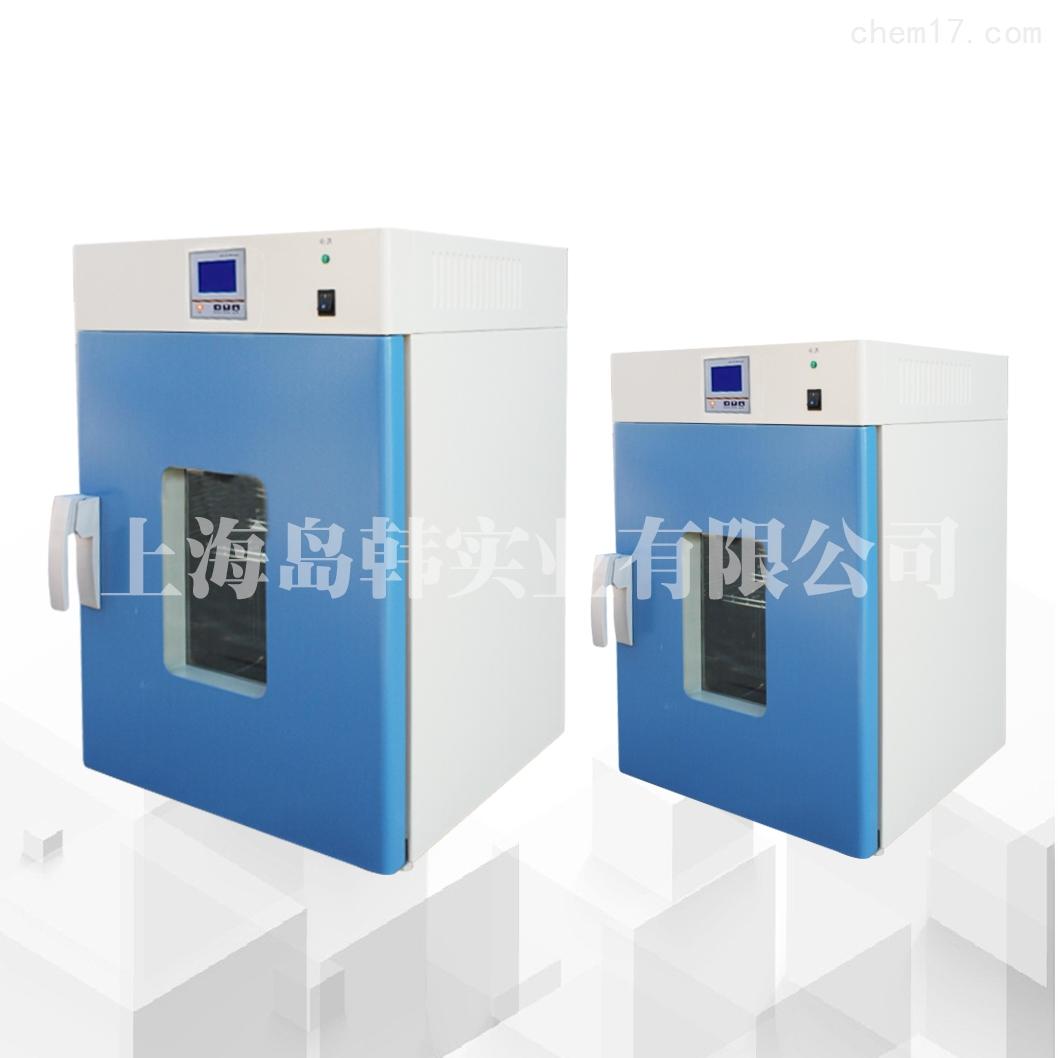 立式小型250度烘干箱电热恒温鼓风干燥箱