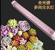 多肉上色补光灯全光谱组培T8 LED植物生长灯