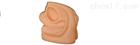 女性内外生殖及导尿模块