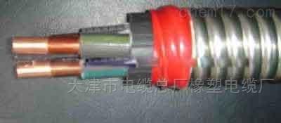 QYEQ潜油电力电缆