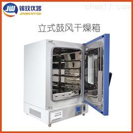 DGG-9620BD智能編程鼓風烘箱 立式干燥箱