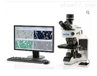 BX53M奥林巴斯金相显微镜