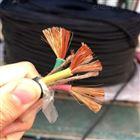 djfpvp电线电缆DJFPVP耐高温计算机电缆线