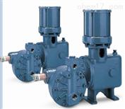 600/6000系列美国海王星NEPTUNE泵