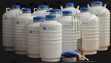 YDS-35-80-LS(6)液氮罐