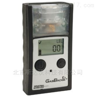 单一可燃气体检测仪英思科GBEx