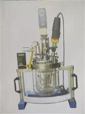 2L、5L天津予华实验室均质乳化系统反应器