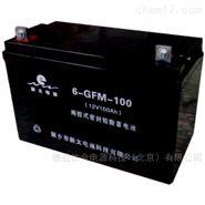 新太蓄电池6-GFM-10012V100AH全新原装