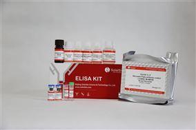人白细胞介素4(IL-4)ELISA试剂盒