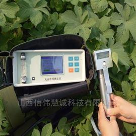 SHK-0806D植物光合作用测定仪