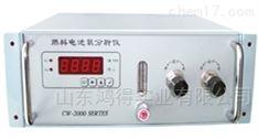 微量氧分析仪 CW-2000ZX