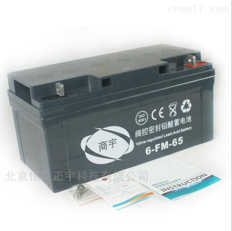 6-FM-100-商宇阀控密封铅酸蓄电池6-FM-100 12V100AH